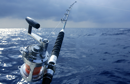 One only resorts honeymoon wedding registry for Deep sea fishing los angeles