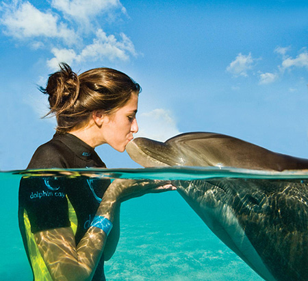Dolphin Experiences at Atlantis' Dolphin Cay