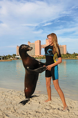 Sea Lion Experiences at Atlantis' Dolphin Cay
